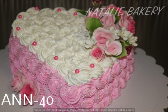 ANN-40