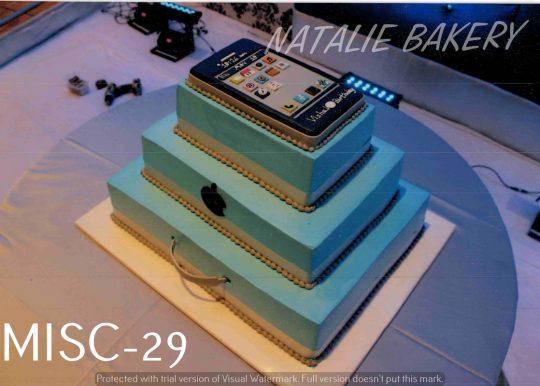 MISC-29